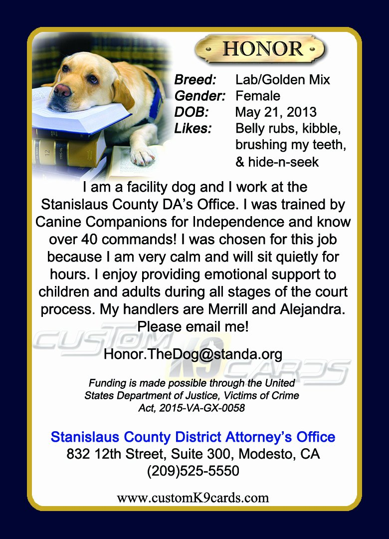 Service Dog Card Template Awesome Custom K9 Cards