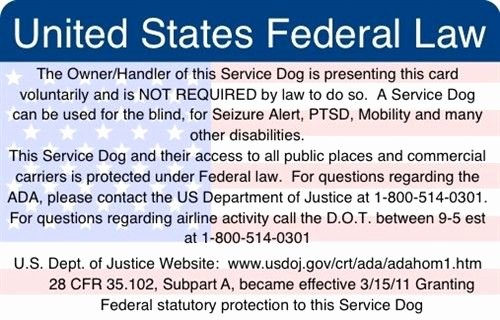 Service Dog Card Template Best Of Ada & Federal Law Information Card