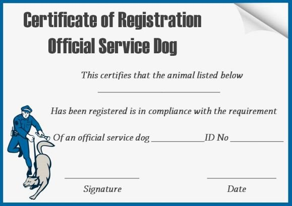 Service Dog Card Template Lovely Service Dog Certificate Template 10 Word Templates for