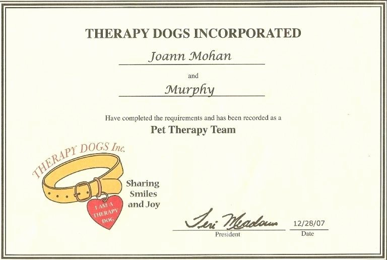 Service Dog Certificate Template Best Of 24 Of Service Animal Certificate Template