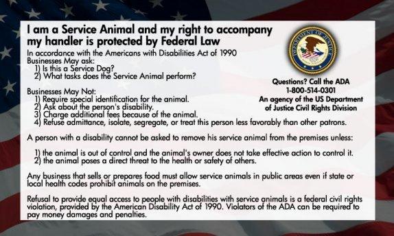 Service Dog Certificate Template Best Of Service Dog Ada Info Cards