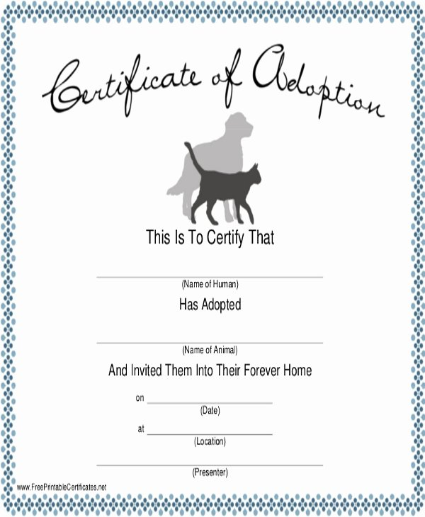 Service Dog Certificate Template Elegant Dog Certificate Template 9 Free Pdf Documents Download
