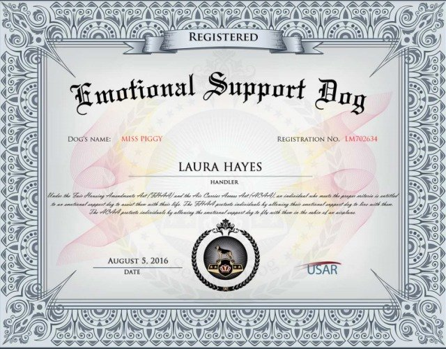 Service Dog Certificate Template Fresh Don T Dog the System to Dine with Your Pup