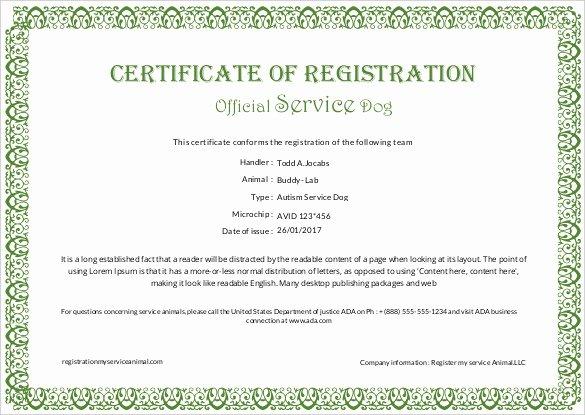Service Dog Certificate Template Fresh Printable Certificate Template 46 Adobe Illustrator