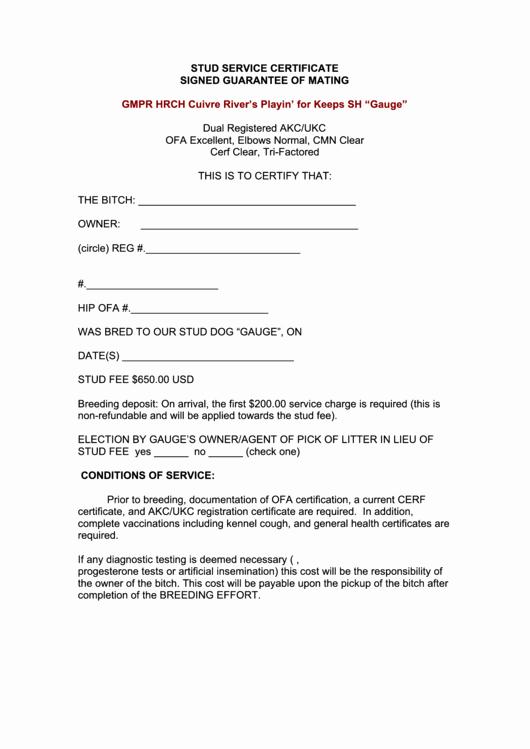 Service Dog Certificate Template Inspirational Stud Service Certificate Template Printable Pdf