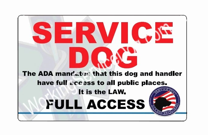 Service Dog Certificate Template Luxury Pvc Id Badge Service Dog Full Access Id Card