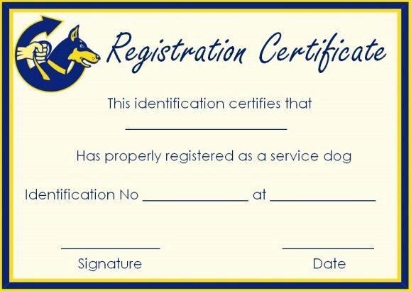 Service Dog Certificate Template Luxury Service Dog Certificate Template 10 Word Templates for