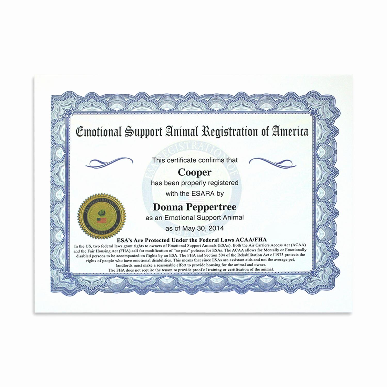 Service Dog Certificate Template Unique Esa Ultimate Vip All Access Kit