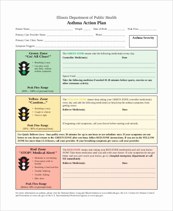 Simple Action Plan Template Lovely 13 Action Plan Examples