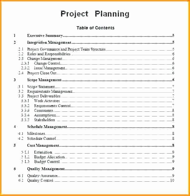 Simple Communication Plan Template Luxury Munication Plan Presentation Example Project Management