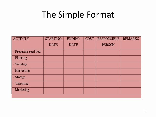 Simple Implementation Plan Template Best Of Project Implementation