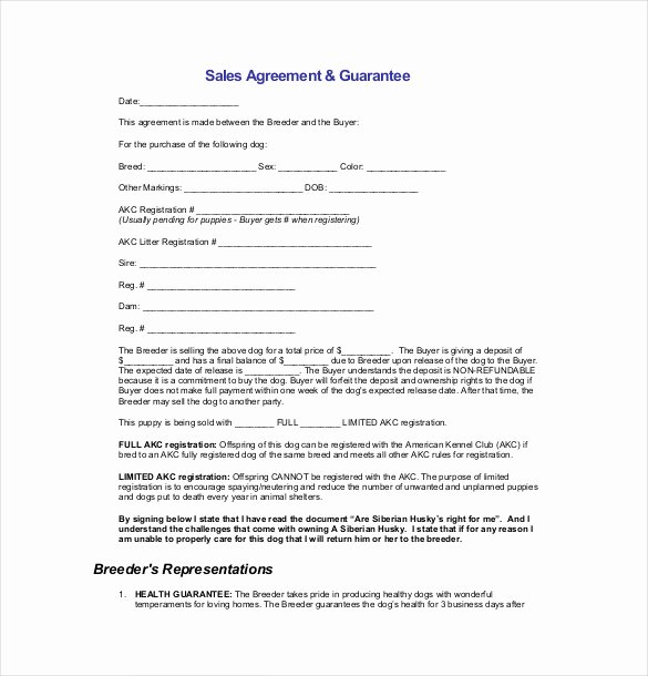 Simple Sales Agreement Template Best Of 21 Sales Agreement Templates Word Google Docs Apple
