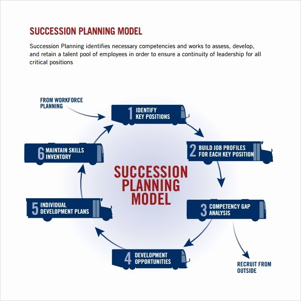 Simple Succession Plan Template Awesome 10 Succession Planning Templates