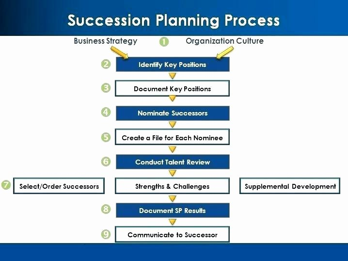 Simple Succession Plan Template Inspirational Succession Planning Template Ppt Inspirational Graph