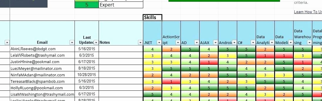 Skills Matrix Template Excel New Skills Matrix Template Beautiful Template Design Ideas