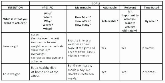 Smart Action Plan Template Elegant Writing An Action Plan Template Smart Goal Worksheet and