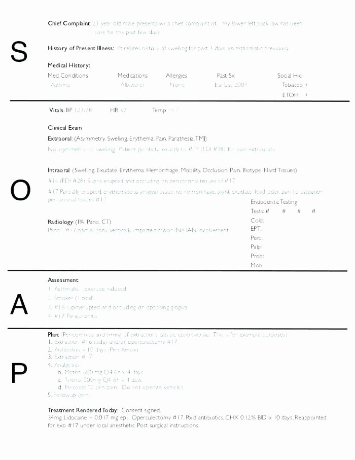Soap therapy Note Template Beautiful Printable Massage therapy soap Notes forms Note Blank