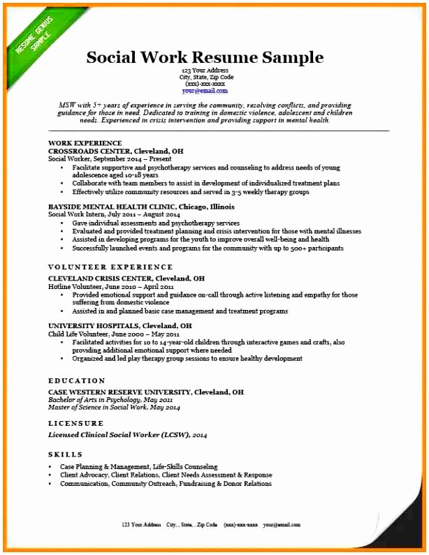 Social Work Resume Template Luxury 9 social Work Case Management Plan Template Tupea