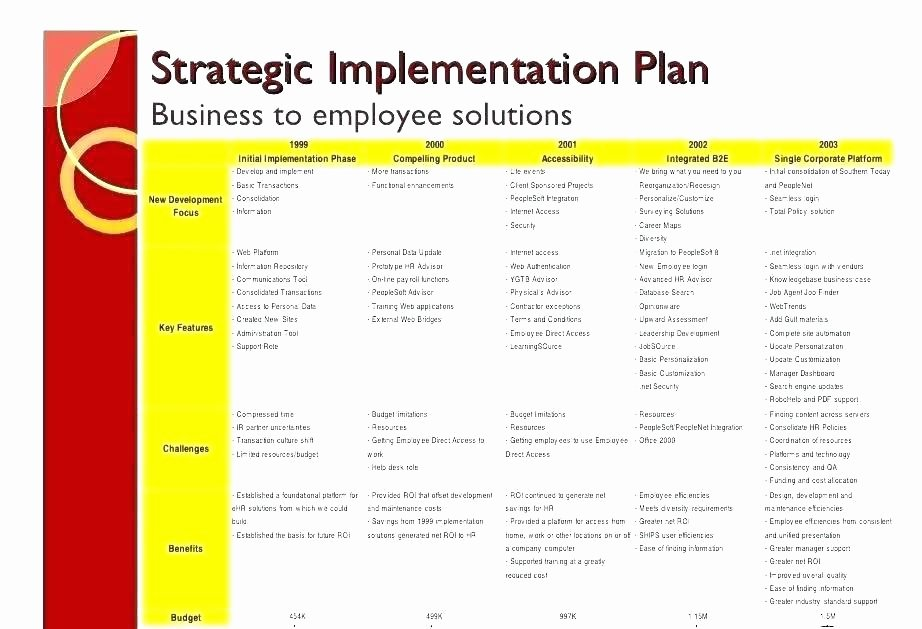 Software Implementation Plan Template Elegant Business Plan Strategy and Implementation Sample Business