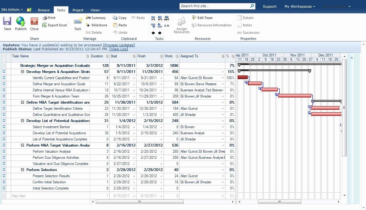 Software Implementation Plan Template Fresh Unique Best Project Plan Template Idealstalist