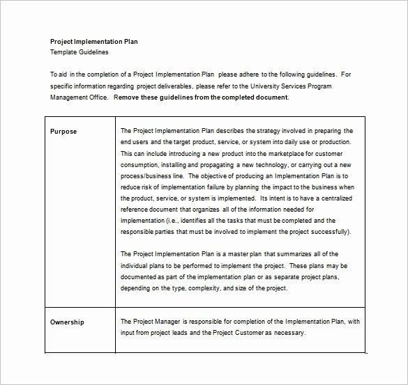 Software Implementation Plan Template Unique 8 Implementation Plan Templates Word Google Docs