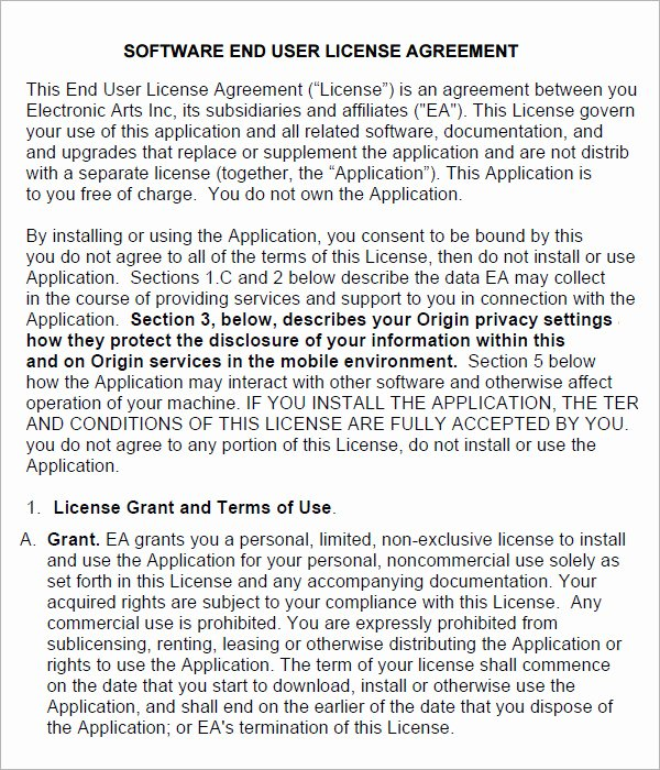 Software License Agreement Template Luxury End User License Agreement 6 Free Pdf Doc Download