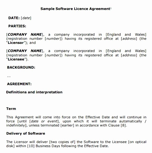 Software Licensing Agreement Template Lovely 9 software License Agreement Template B2b