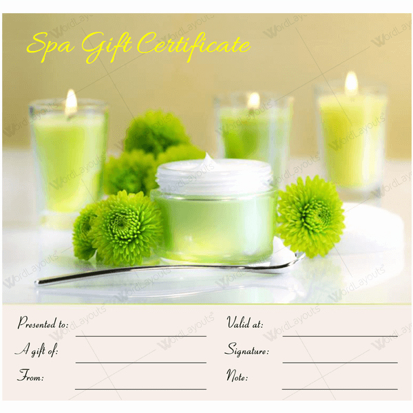 Spa Gift Certificate Template Inspirational Gift Certificate 17 Word Layouts