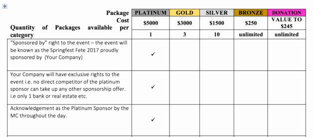 Sponsorship Package Template Free Elegant Charity Sponsorship Proposal Template