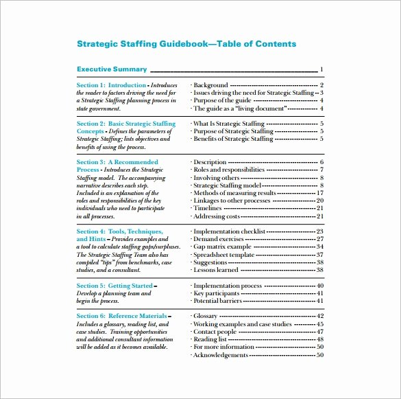 Staffing Plan Template Excel Beautiful 8 Staffing Plan Template Pdf Doc Xlsx