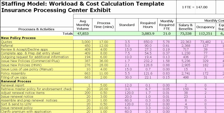 Staffing Plan Template Excel Elegant Fte Exhibits