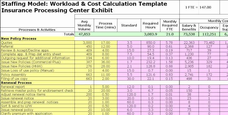Staffing Plan Template Excel Elegant Fte Exhibits
