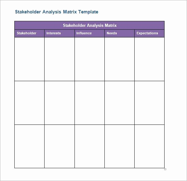 Stakeholder Analysis Template Excel Elegant 10 Stakeholder Analysis Samples