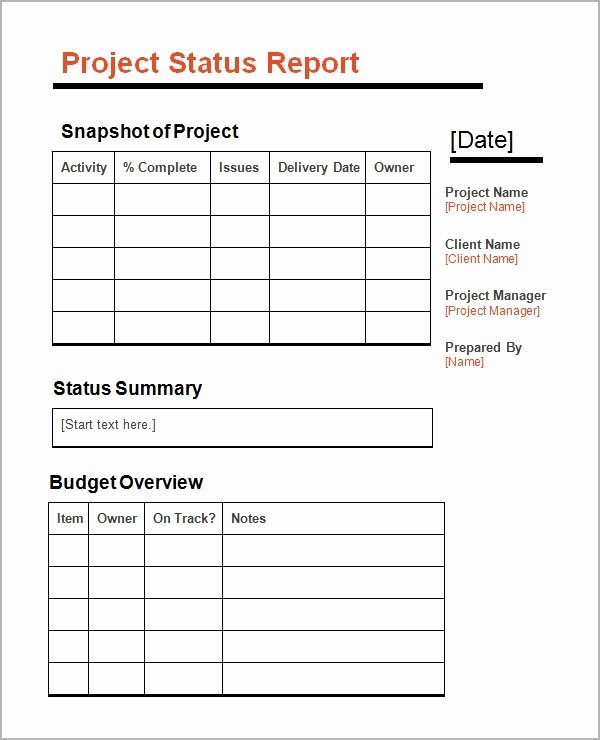 Status Report Template Excel New 5 Status Report Templates Excel Pdf formats