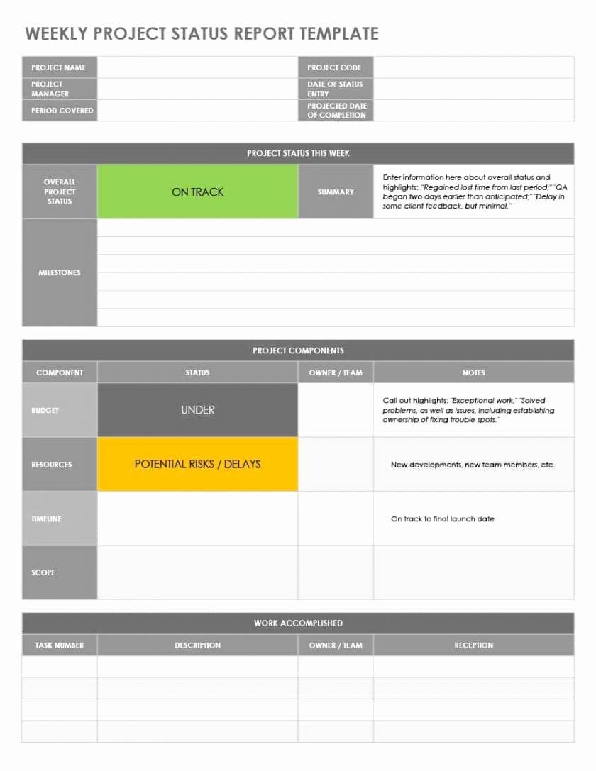 Status Report Template Excel Unique Project Status Report Template