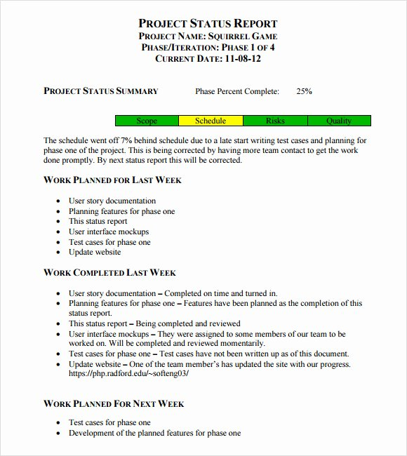 Status Report Template Word Luxury Sample Weekly Status Report 7 Documents In Pdf Word