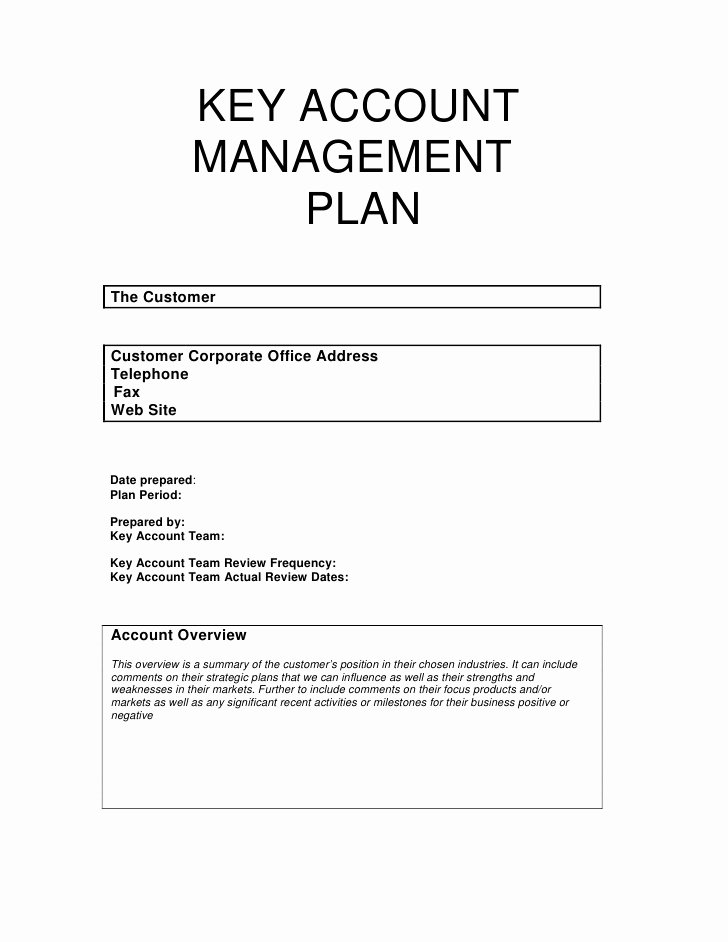 Strategic Account Plan Template Inspirational Key Account Management Plan