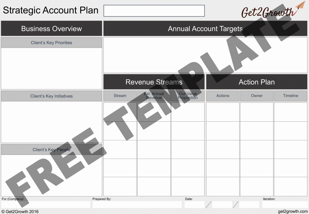 Strategic Account Plan Template Luxury the E Page Account Plan Template