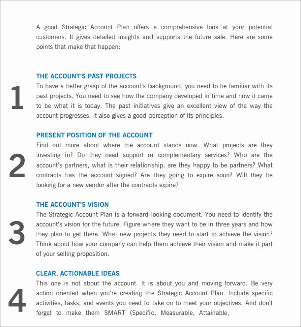 Strategic Account Plan Template New Sample Account Plan Template 9 Free Documents In Pdf Word
