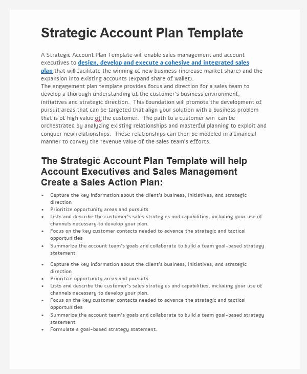 Strategic Account Plan Template Unique 31 Sales Plan formats