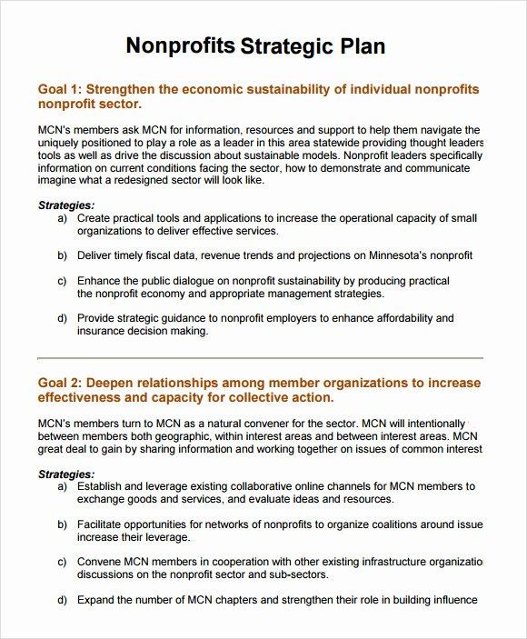 Strategic Plan Template Nonprofit Beautiful 11 Non Profit Business Plan Samples