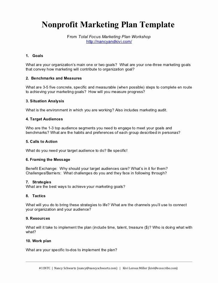 Strategic Plan Template Nonprofit Beautiful Nonprofit Marketing Plan Template Summary