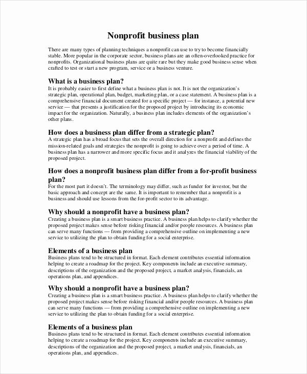 Strategic Plan Template Nonprofit Lovely Non Profit Business Plan 13 Pdf Word Documents
