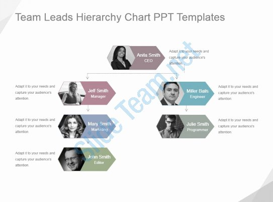 Team Introduction Ppt Template Awesome Style Hierarchy 1 Many 4 Piece Powerpoint