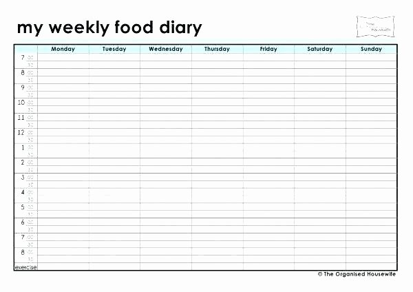 food temperature log template excel t spreadsheet best of weekly diary templates weight watchers