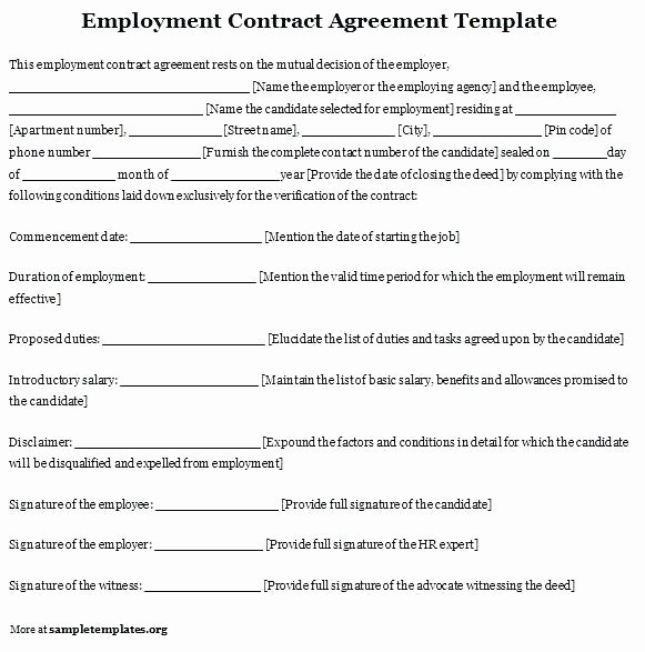 Temporary Employment Contract Template Fresh Employment Contract Template It Agreement Free Cleaning
