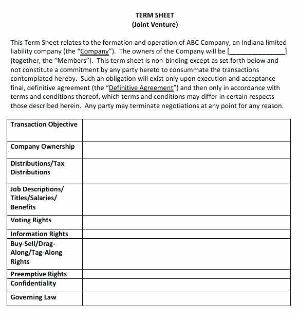 Term Sheet Template Word Lovely Joint Venture Term Sheet Sample and Detailed Business Plan