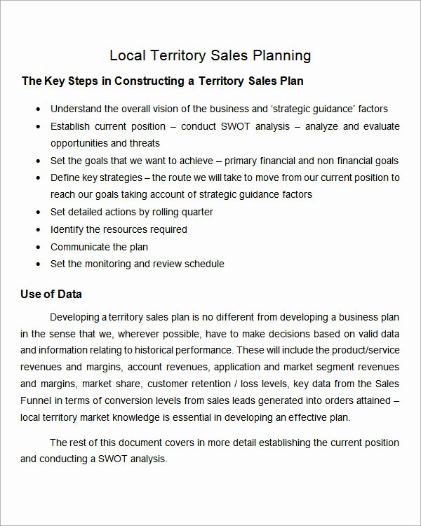 Territory Management Plan Template Awesome Simple Business Action Plan Sample