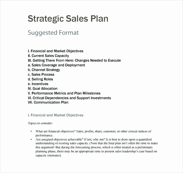 Territory Management Plan Template Inspirational Business Plan for Sales Territory Account Management