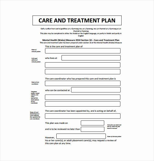 Therapist Treatment Plan Template Lovely Treatment Plan Template